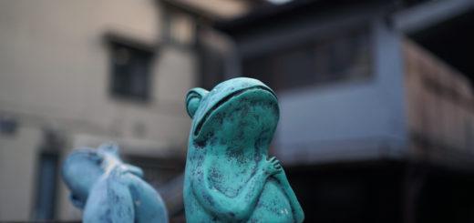 祈り_カエル_蛙