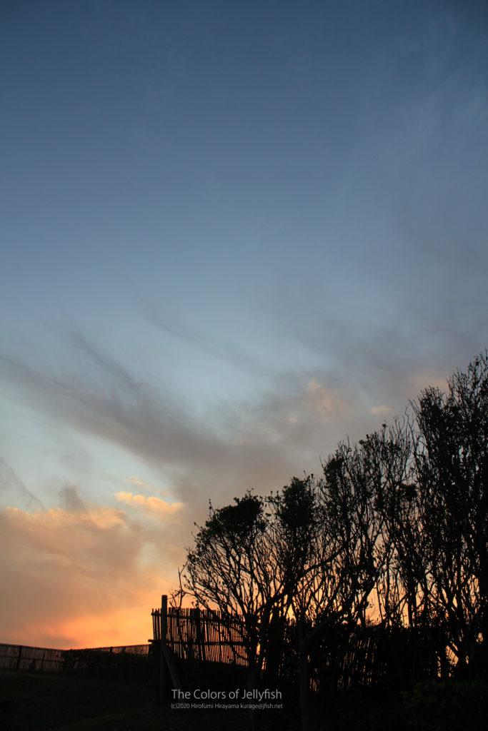 海岸近くの夕焼け
